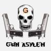 Gun_Asylem