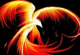 Phoenix76653