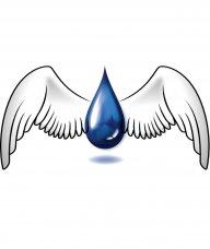 WaterFalcon