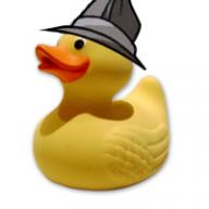 lDucks