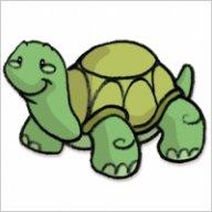 turtlelord