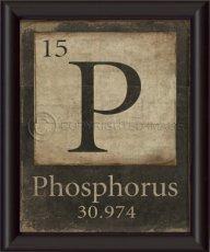 phos4rus