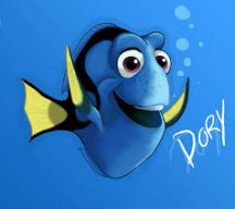 Captain Dory
