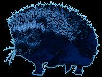 ColonelHedgehog
